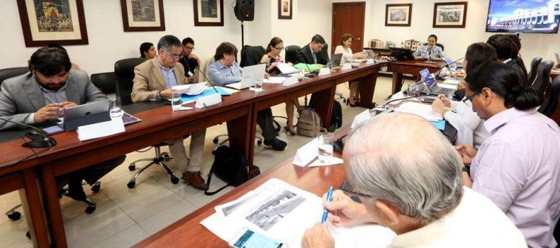 """PRIMER COMITÉ INTERINSTITUCIONAL DEL PLAN """"TODA UNA VIDA"""" TRAZA LÍNEAS DE ACCIÓN"""